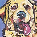 Dog Breeds- G Collection