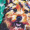 Dog Breeds- N Collection