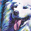 Dog Breeds- S Collection