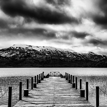 Dramatic black and white Collection