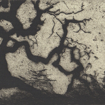 Dry Point Etchings Collection