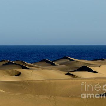 Dunes of Maspalomas Collection