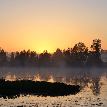 Early Morning and Sunrise in Lake City Florida Collection
