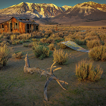 Eastern Sierra Collection