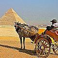 Egypt Photos Collection