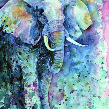 Elephants Collection