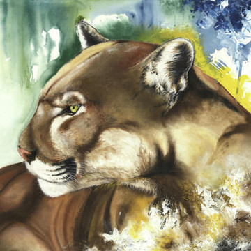 Endangered Florida Wildlife Collection