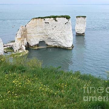 England - Dorset Collection