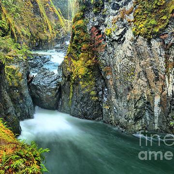 Englishman River Falls Provincial Park - Vancouver Island - British Columbia - Canada Collection