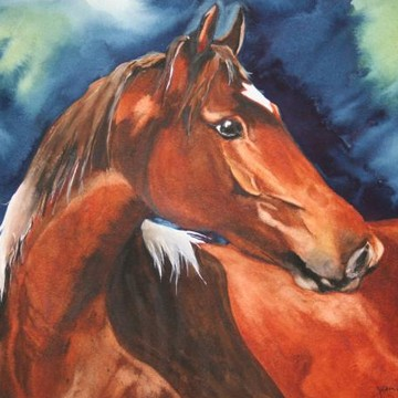 Equine Paintings Collection