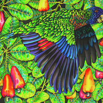 Exotic Birds Collection