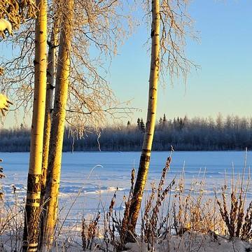 Fairbanks Alaska Collection
