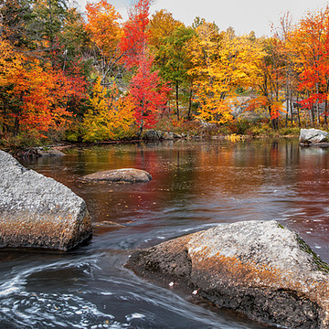 Fall in New England  Collection