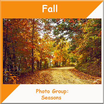 Fall Scenes Collection