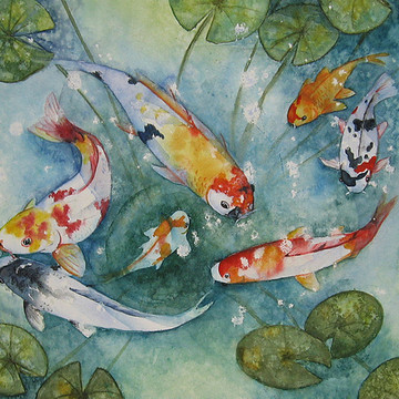 Fancy Goldfish Koi And Frogs Collection