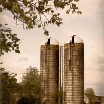 Farm Life Collection