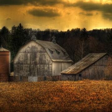 Farms and Barns Collection