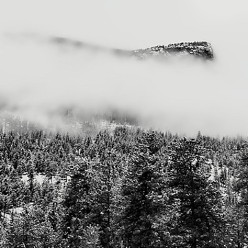 Fine Art of Estes Park - Colorado Collection