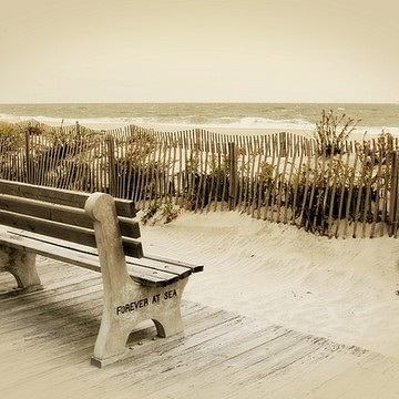 Fine Art of The Jersey Shore - Gallery 2 Collection