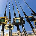Fishing Hunting Outdoors  Collection