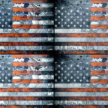Flags of the United States Collection