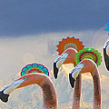 Flamingo series Collection