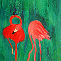 Flamingos and other Creatures