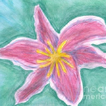 Floral Water Color Paintings Collection