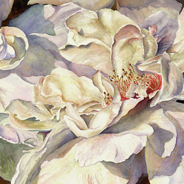 Florals and Botanical Paintings Collection