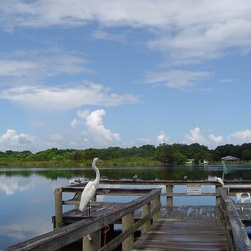 Florida Photographs Collection
