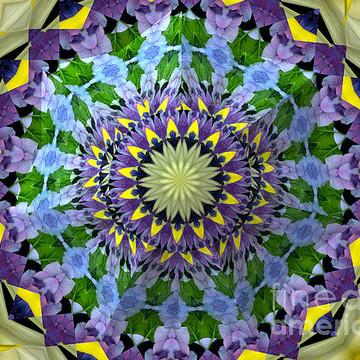 Flower Warps Kaleidoscopes & Mandalas Collection