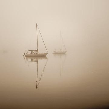 Fog or Mist  Collection