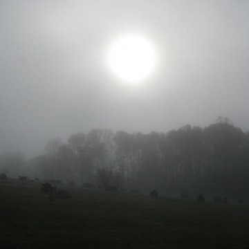 Fog Scenes Collection