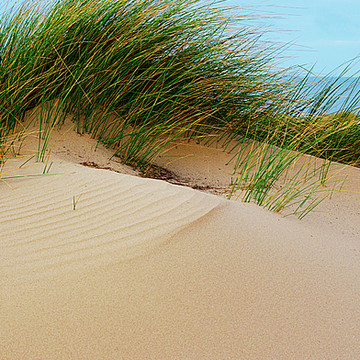 Formby Beach and the Irish Sea Collection