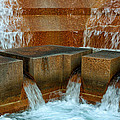 Fort Worth Water Gardens Collection