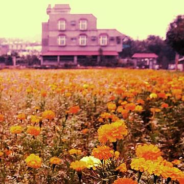 Fotoart - Nostalgia Taiwan