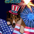 Fourth of July Greeting Cards Collection