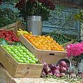 Fruits Vegetables Collection