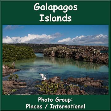 Galapagos Islands  Collection