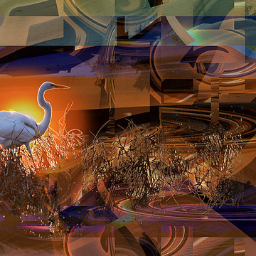 Gallery 1 of Photographic Art. Collection