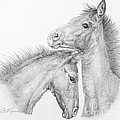 Galloping Graphite Collection
