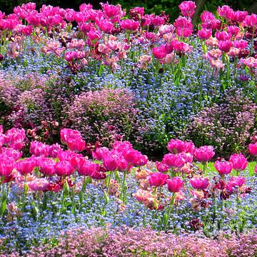 Gardens Collection