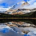 Glacier National Park - East Side Collection