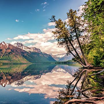 Glacier National Park Collection