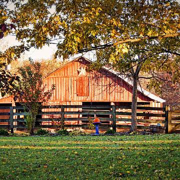 Glenn Valley Farm Collection