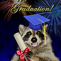 Graduation Greeting Cards Collection
