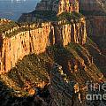 Grand Canyon North Rim Collection