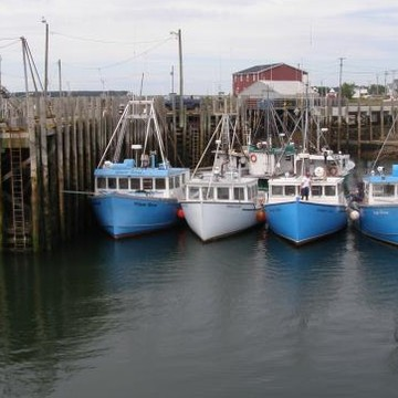Grand Manan Collection