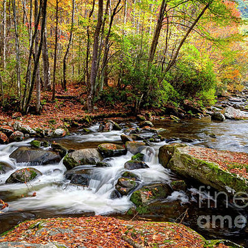 Great Smoky Mountain National Park 2016 Collection