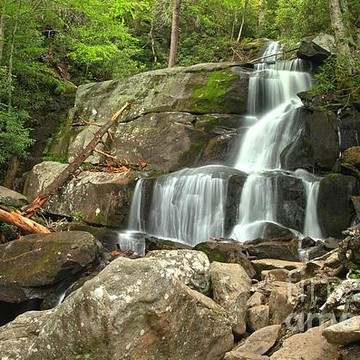 Great Smoky Mountains National Park - Tennessee Collection